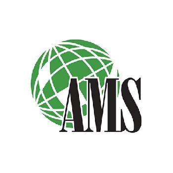 A M S Inc