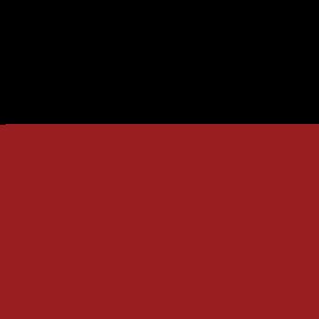 Ludlum Measurements Inc